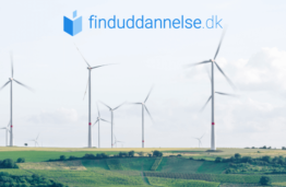 €5000 scholarship offered for prospective master's students choosing a program in sustainability field
