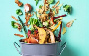 A Look at SPC's New Guide to Compostable Packaging