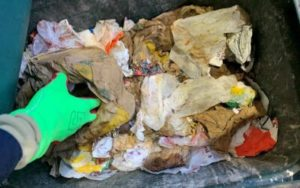 Study of plastic packaging waste helps to deliver a circular economy